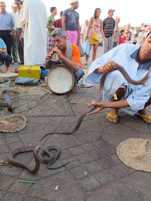 Jemaa-el-fna-charmeur-de-serpent